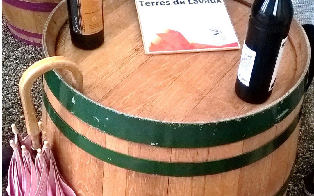 Viticulture: Lavaux